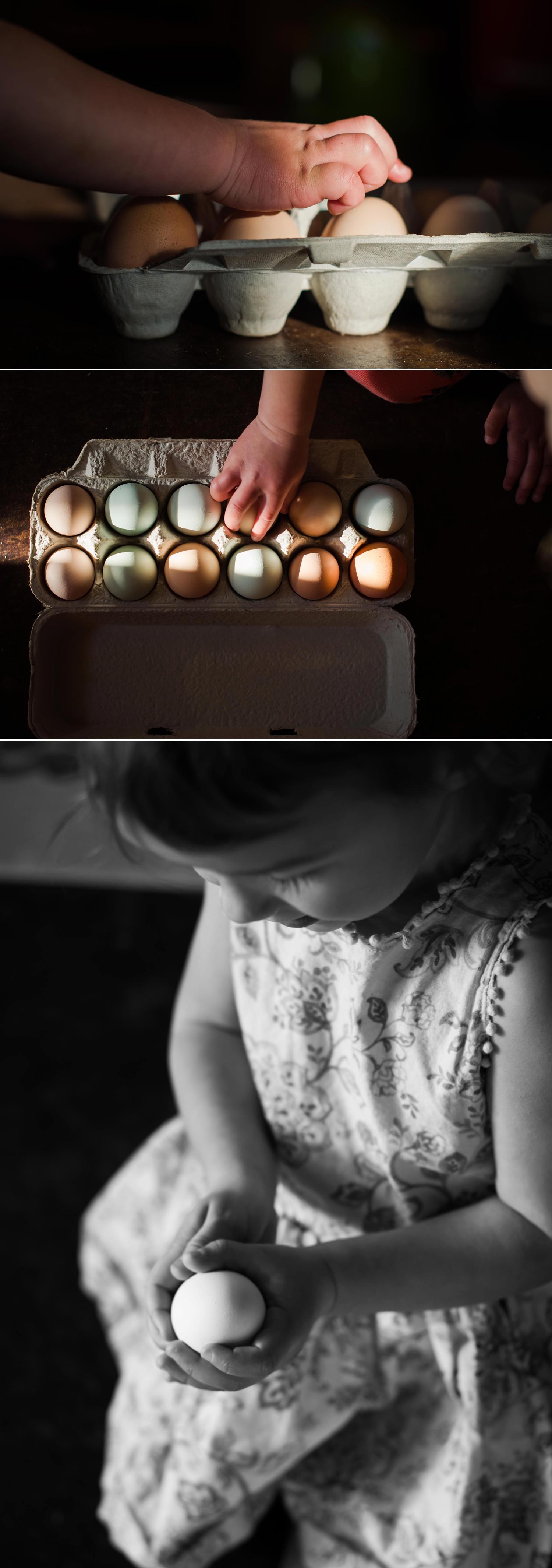eggs_0005.jpg