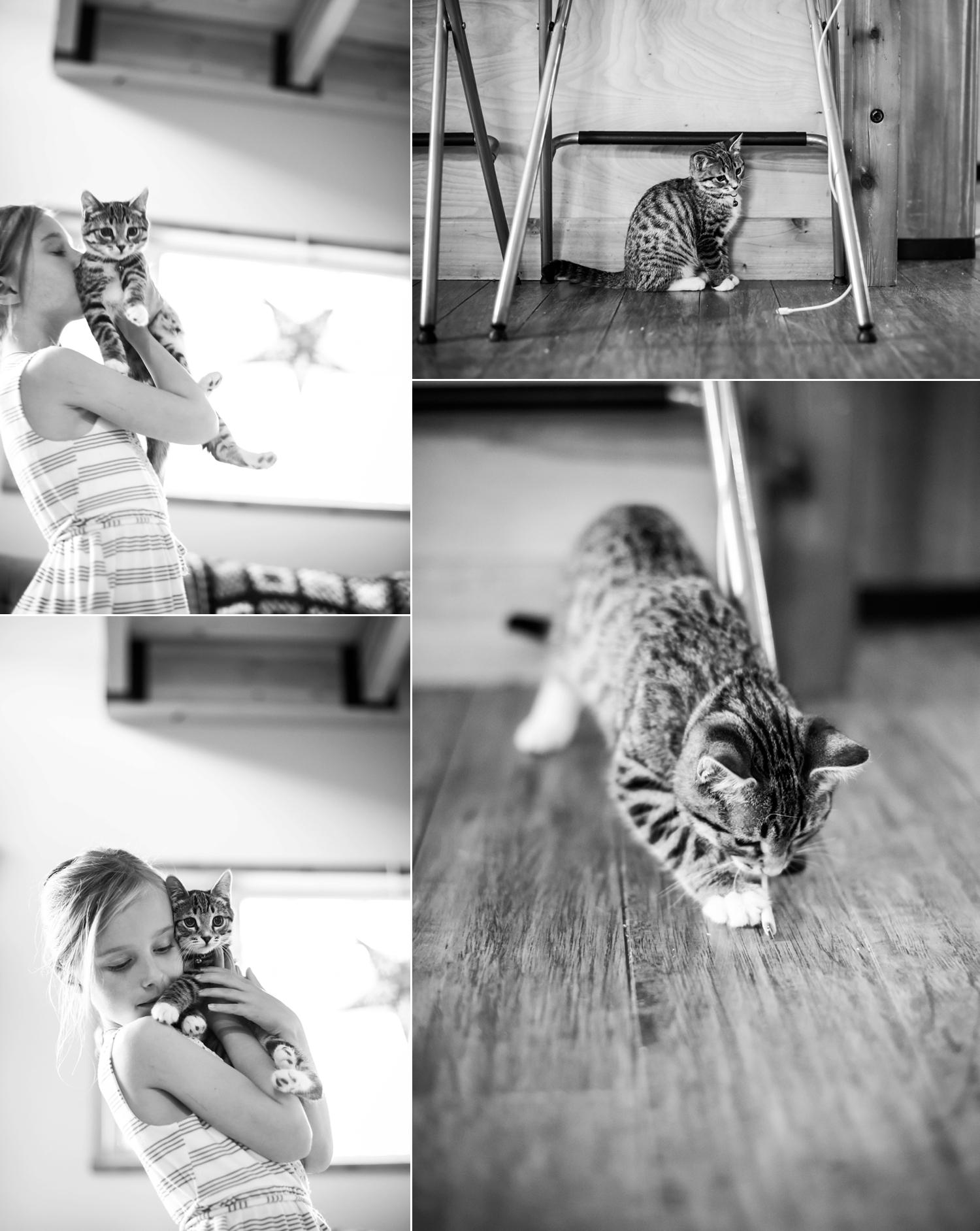 f48 animals_0004.jpg