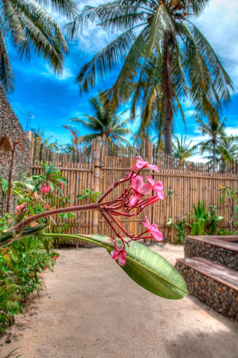 Garden flower villa ottalia