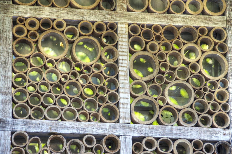 Bamboo exterior villa ottalia gili