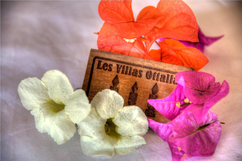 villa-ottalia-flowers.jpg