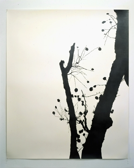 "Twilight , 2003 pencil on watercolor paper 60"" x 50"" SOLD Private Collection NYC"