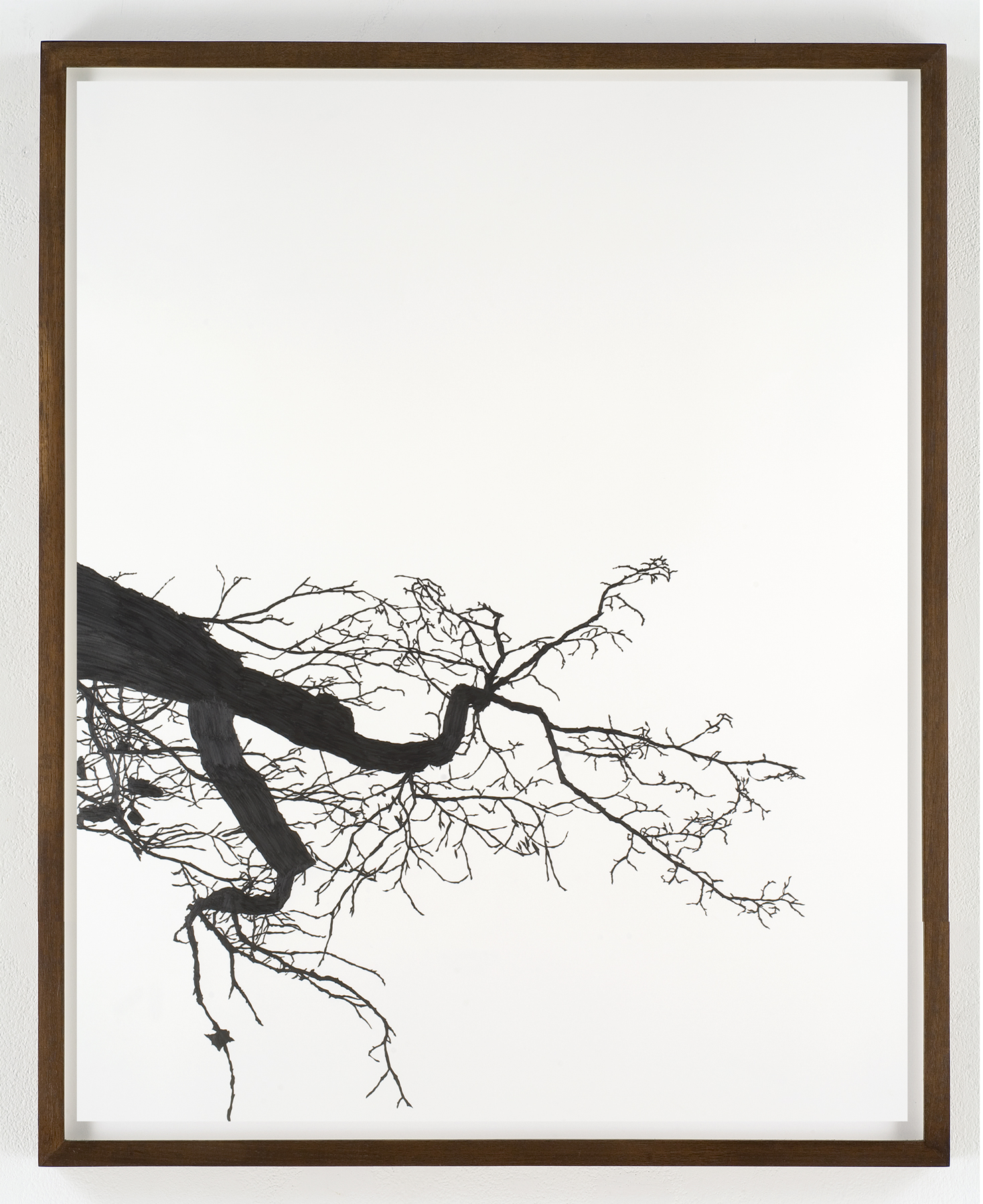 "Meghan Gerety, 2008 Pencil on watercolor paper 60"" x 40"" framed in dark walnut"