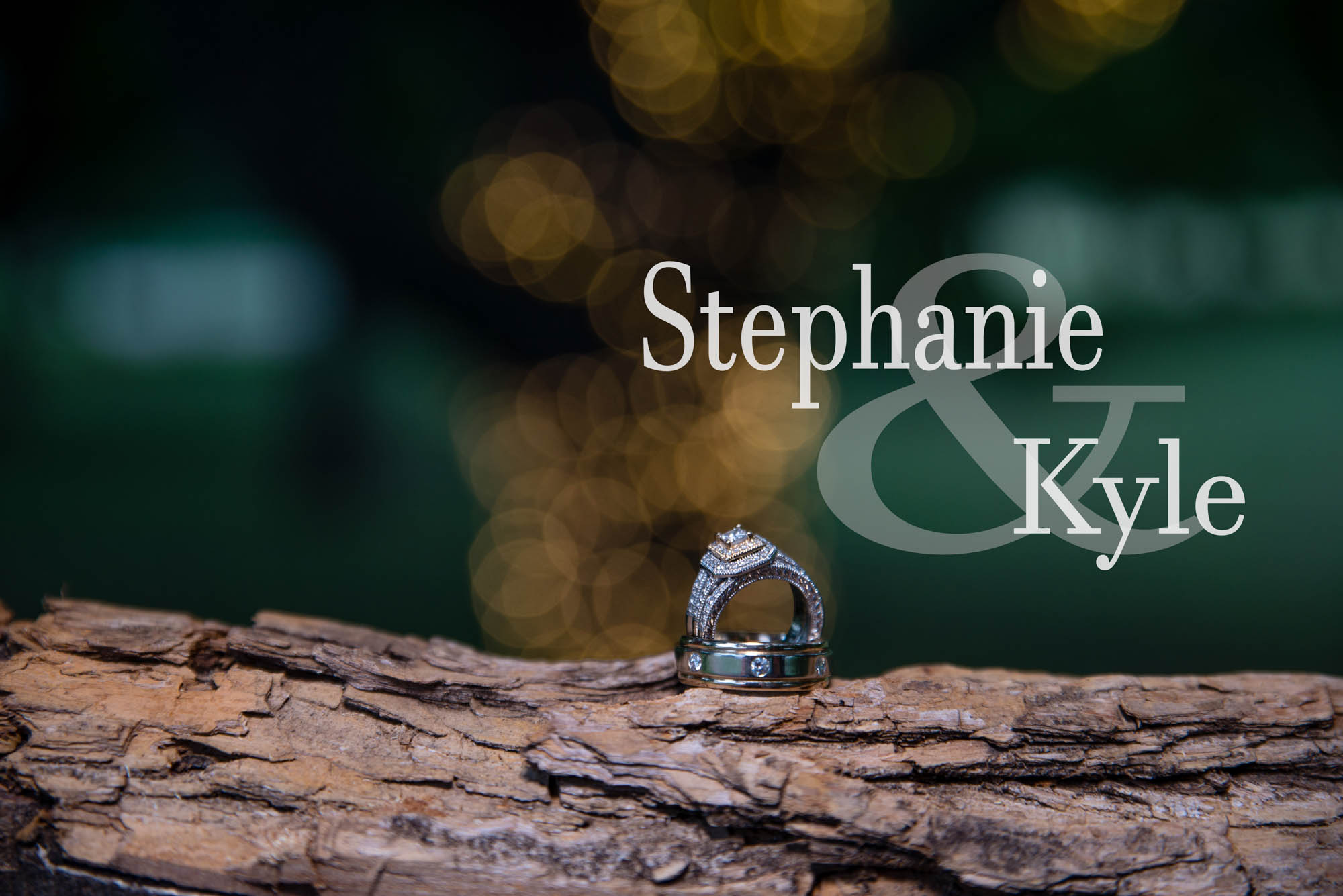 Stephanie Ray Wedding PhotographyDSC_4861w.jpg