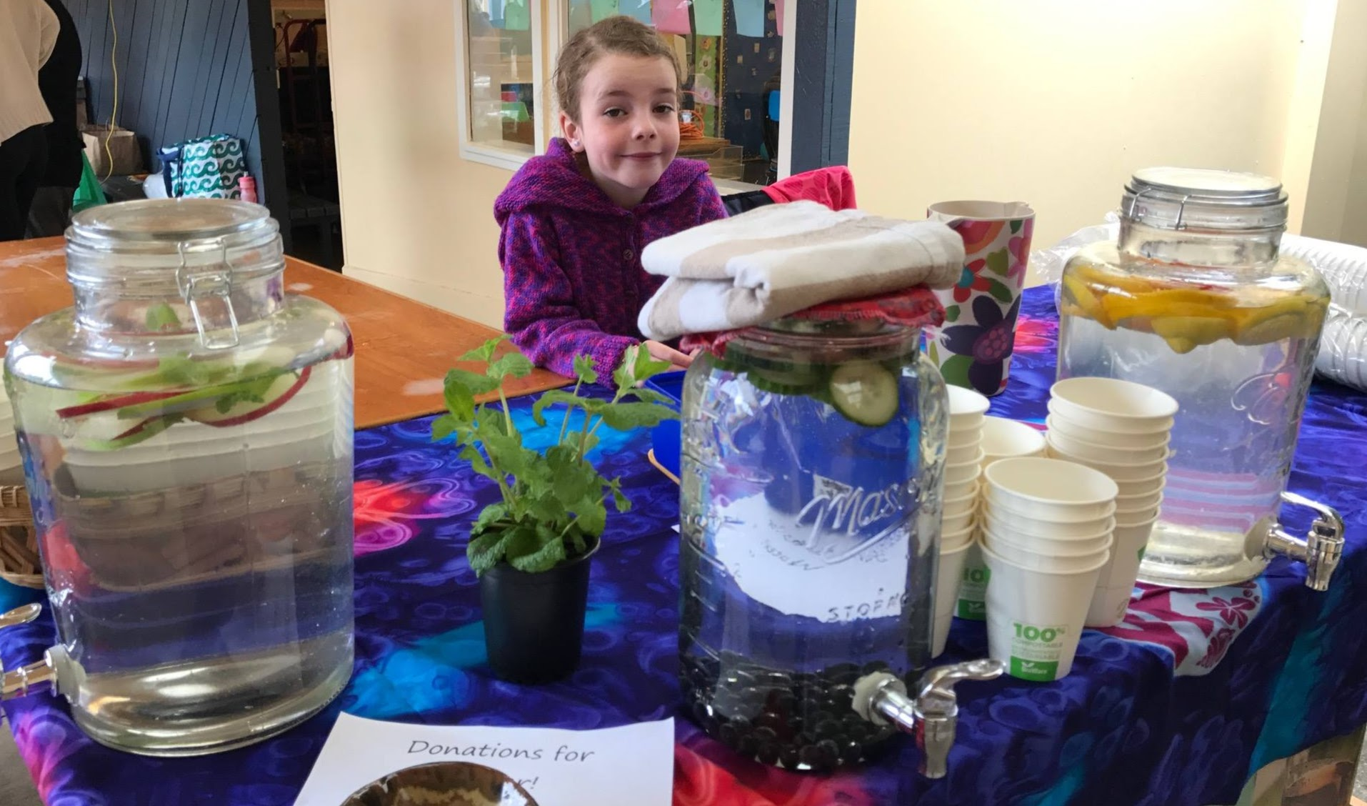 Water Kit at St Francis de Sales School Fair