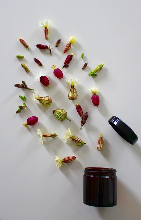 medicinal-flower-4246063_960_720.jpg
