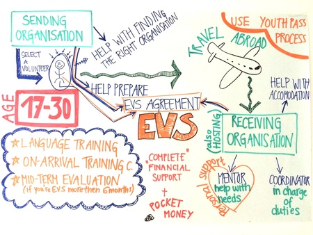 EVS board.jpg