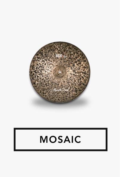 MOSAIC---Cat.jpg