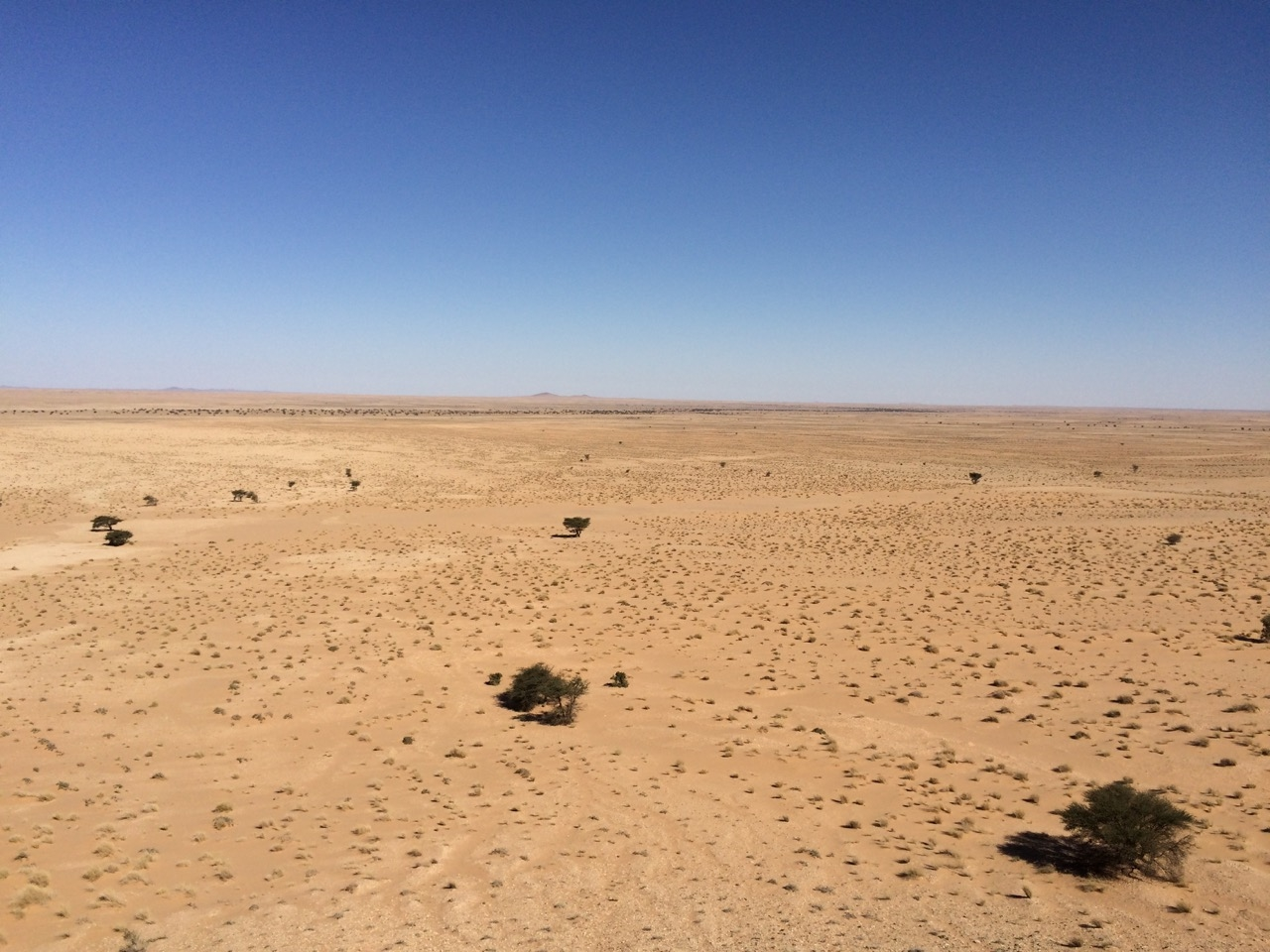 Photo : Oued and massifs in Western Sahara