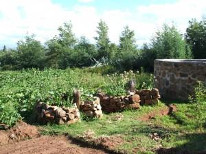 Keyhole Gardens and Seedbeds