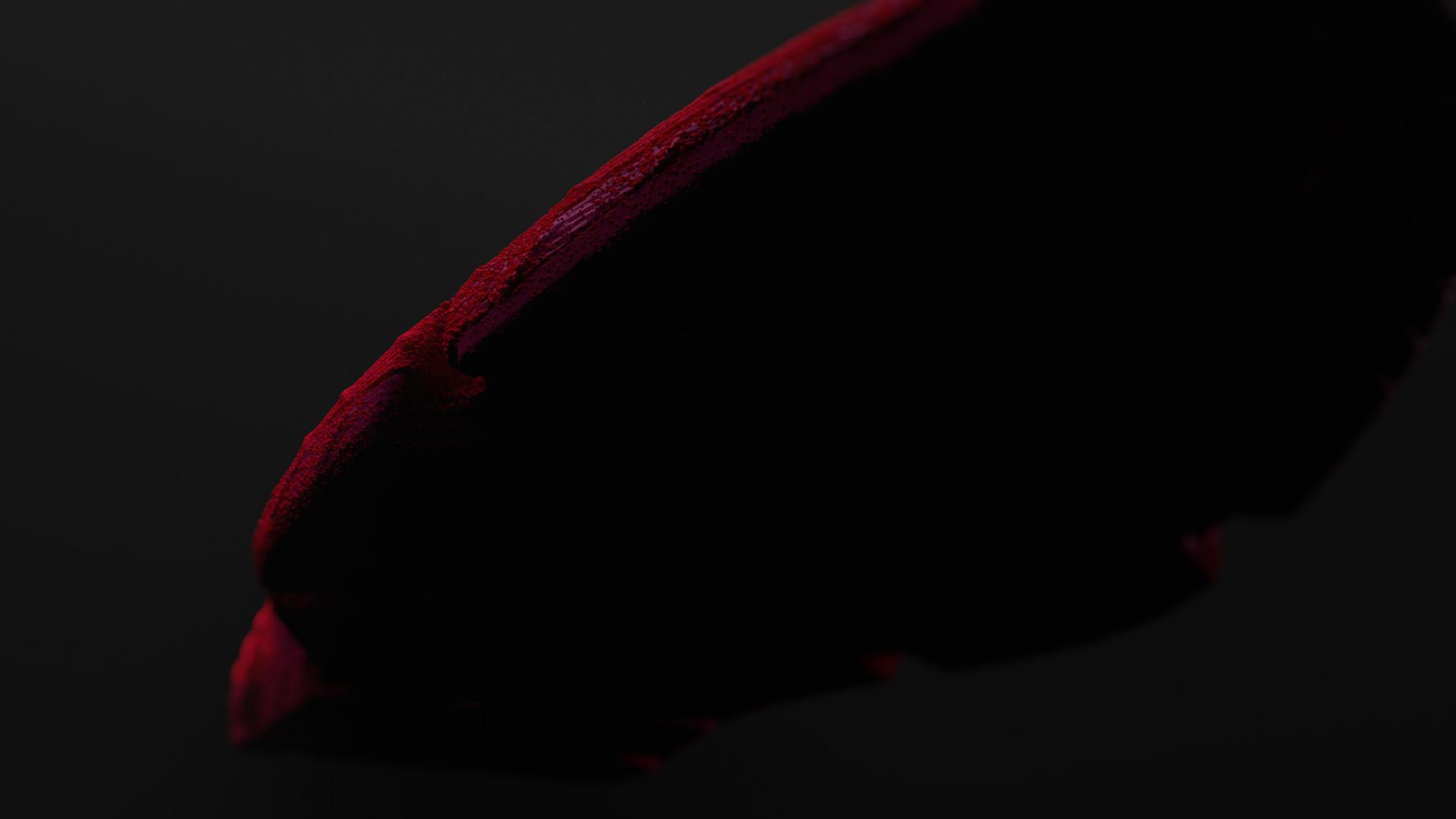 Shoe_XP_002_cam14.jpg