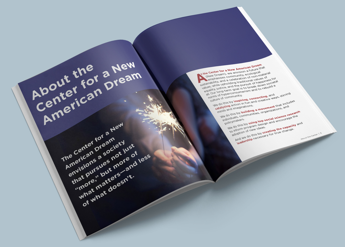 ANNUAL REPORTS - New Dream 2014 - mockup1 copy.jpg