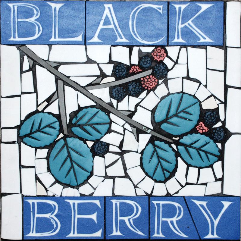 PS Blackberry.jpg