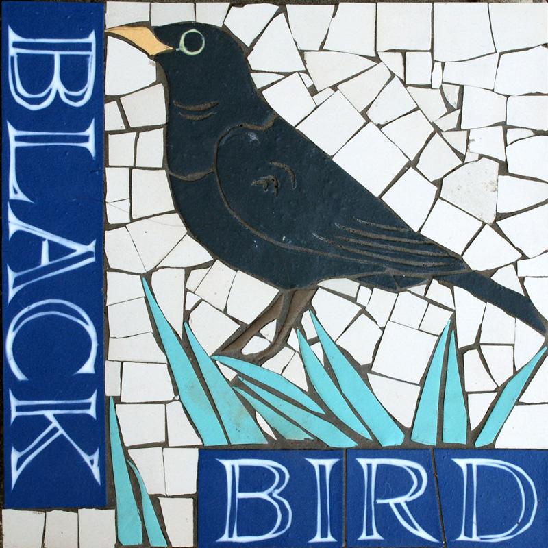 PS Blackbird.jpg