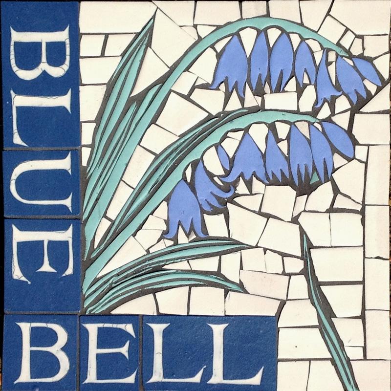PS Bluebell.JPG