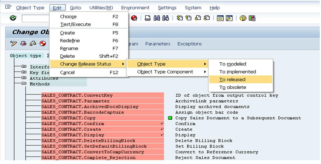 SAP Custom Business