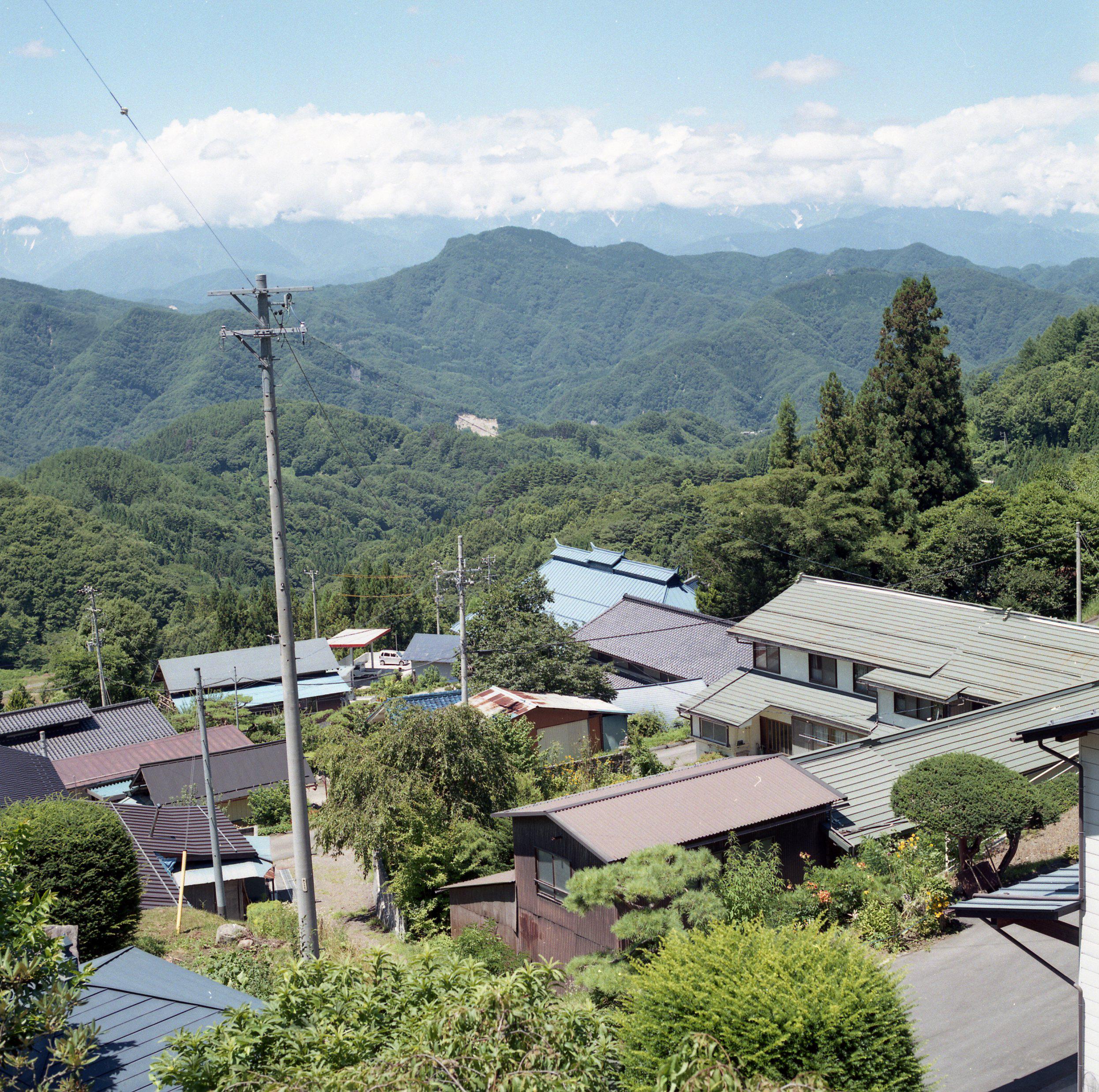 HOUSING_ps_Omi Mura Summer Green 2_007.jpg