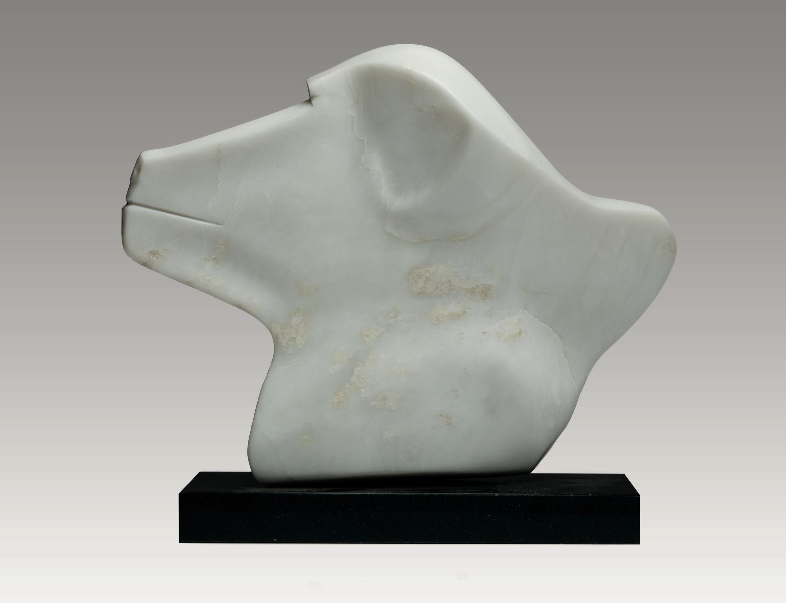 Baboon Head (Verso)
