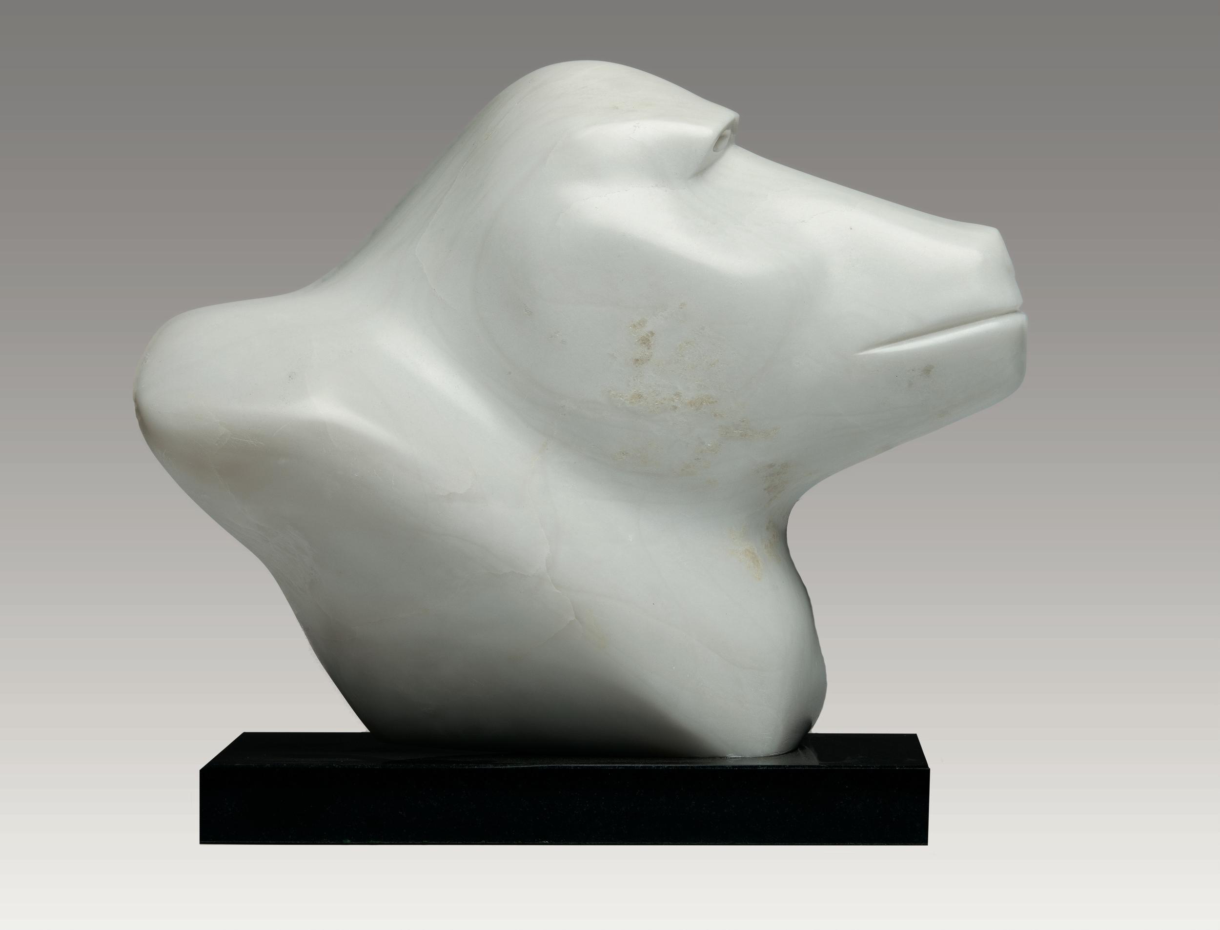 Baboon Head