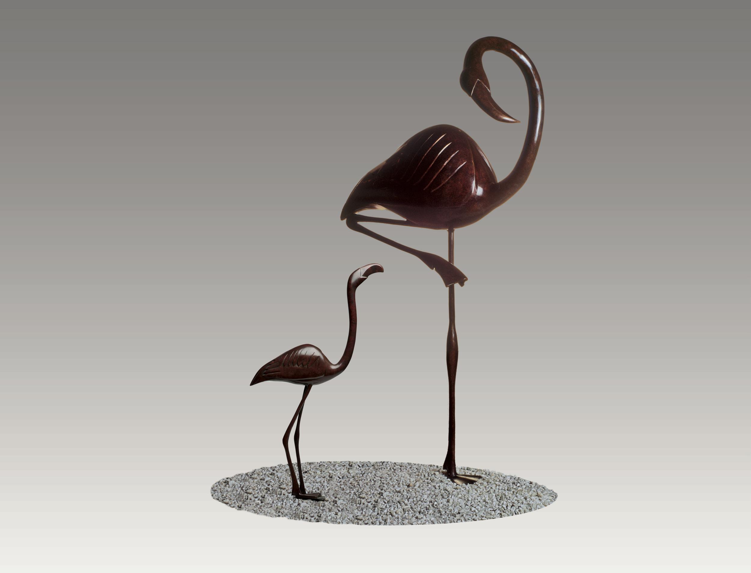 Young Flamingo / Flamingo