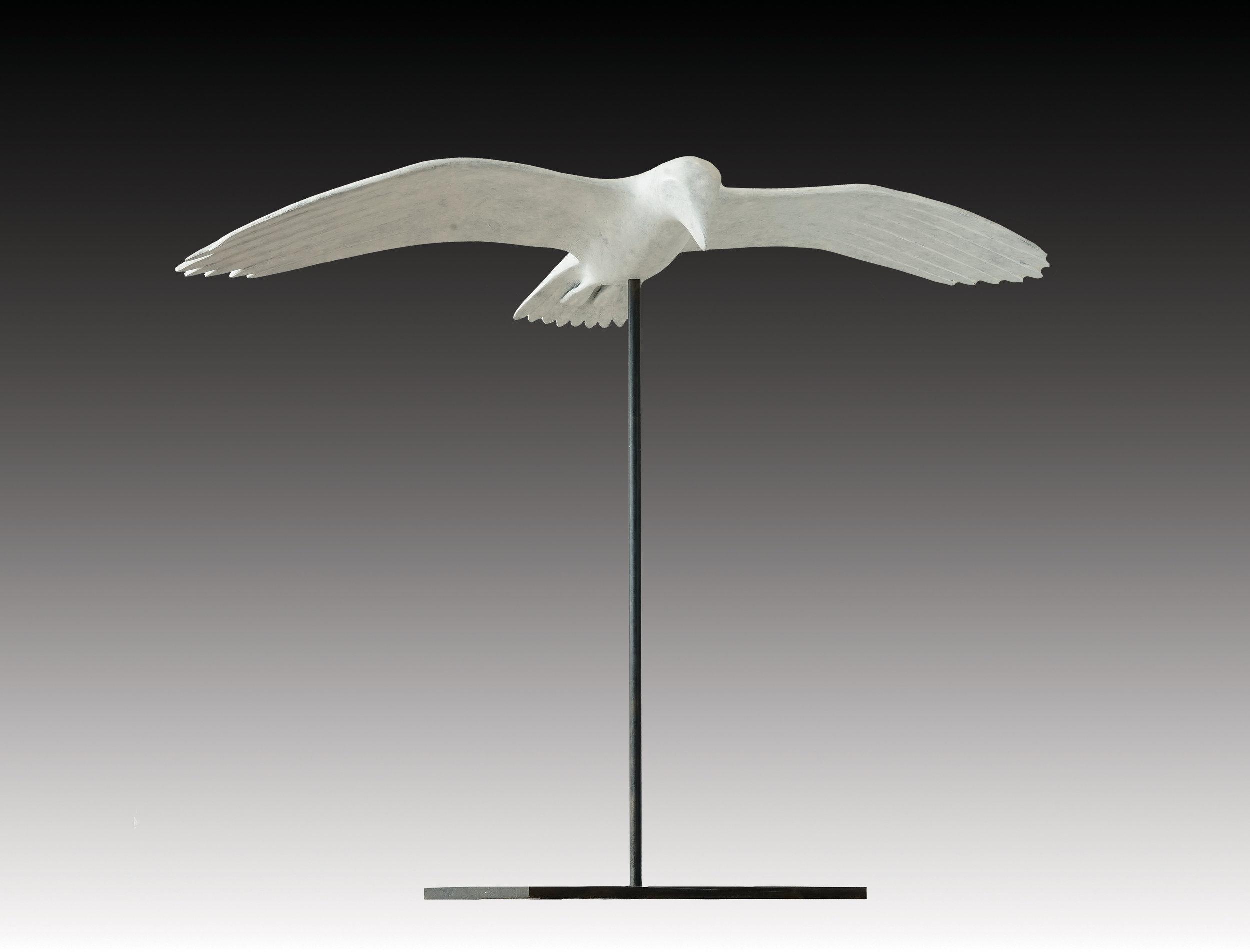 Gull Gliding 28x37x14 Bronze Ed9.jpg