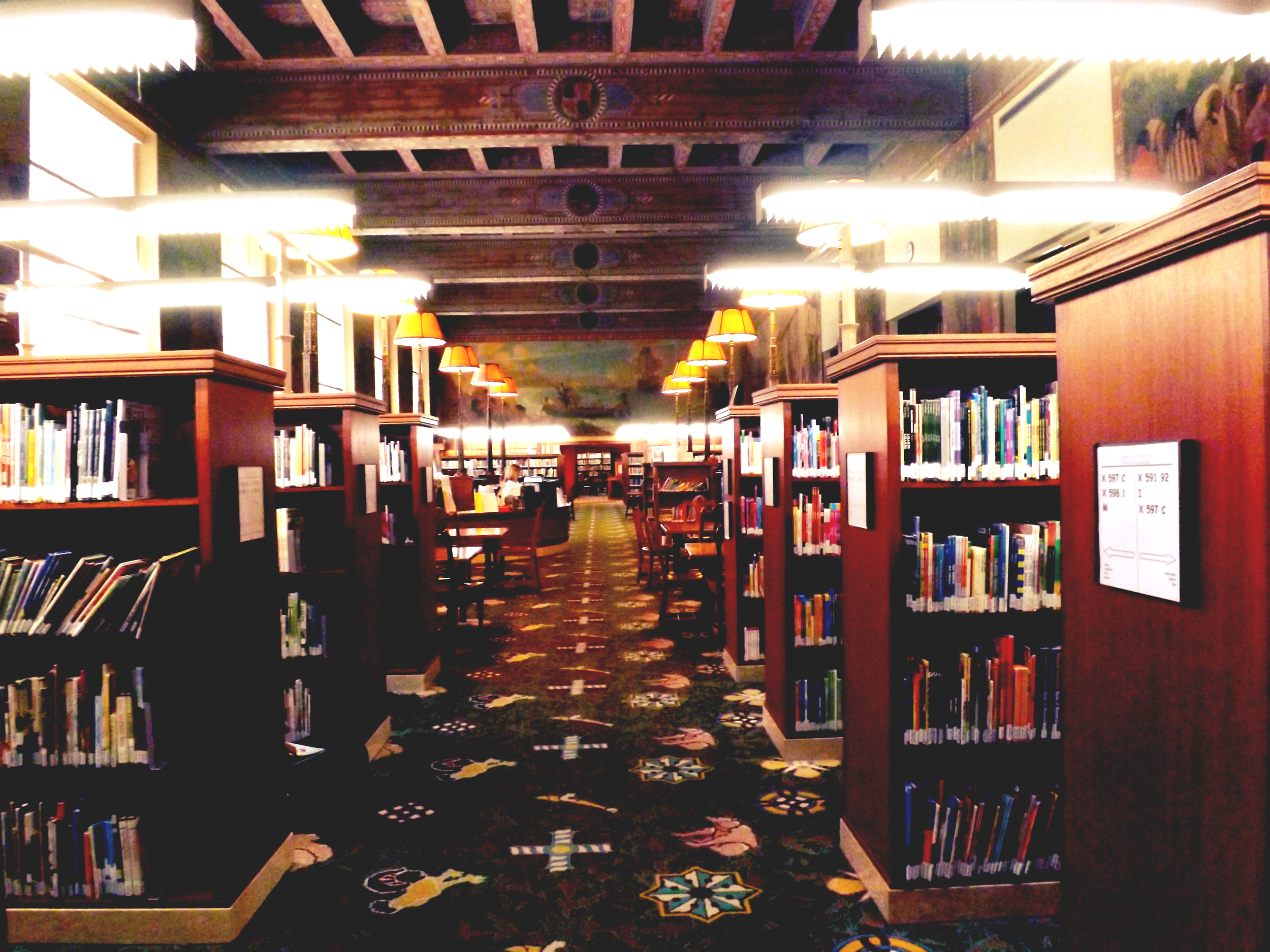 One of the many shelving areas where miles of aisles are worthy of getting lost within. Stem