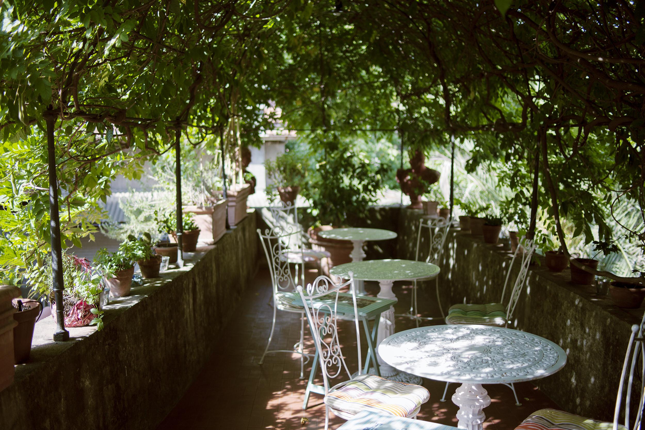 patio terrace plants outdoor exterior photography