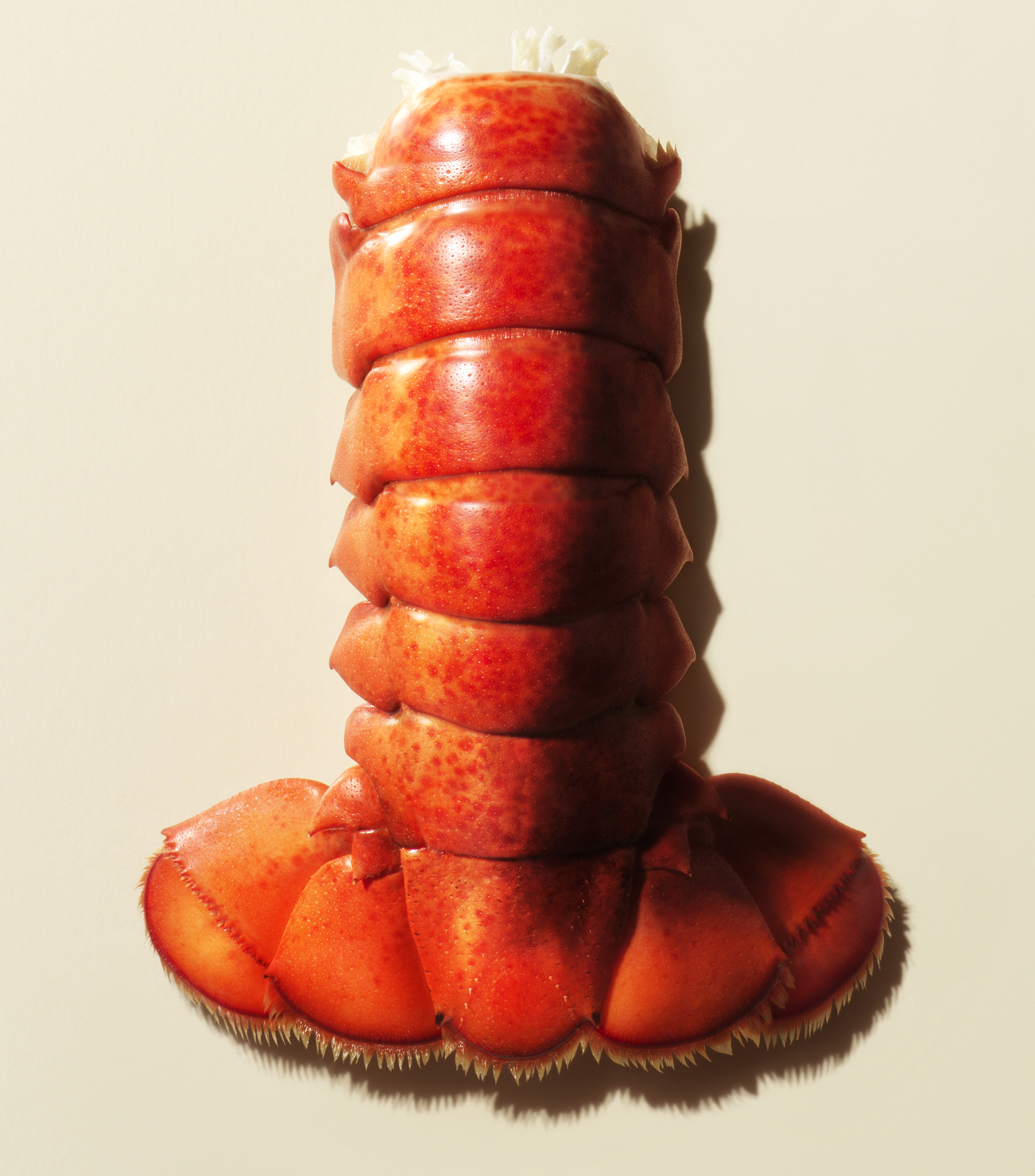 Lobster Tail earl's restaurant ad