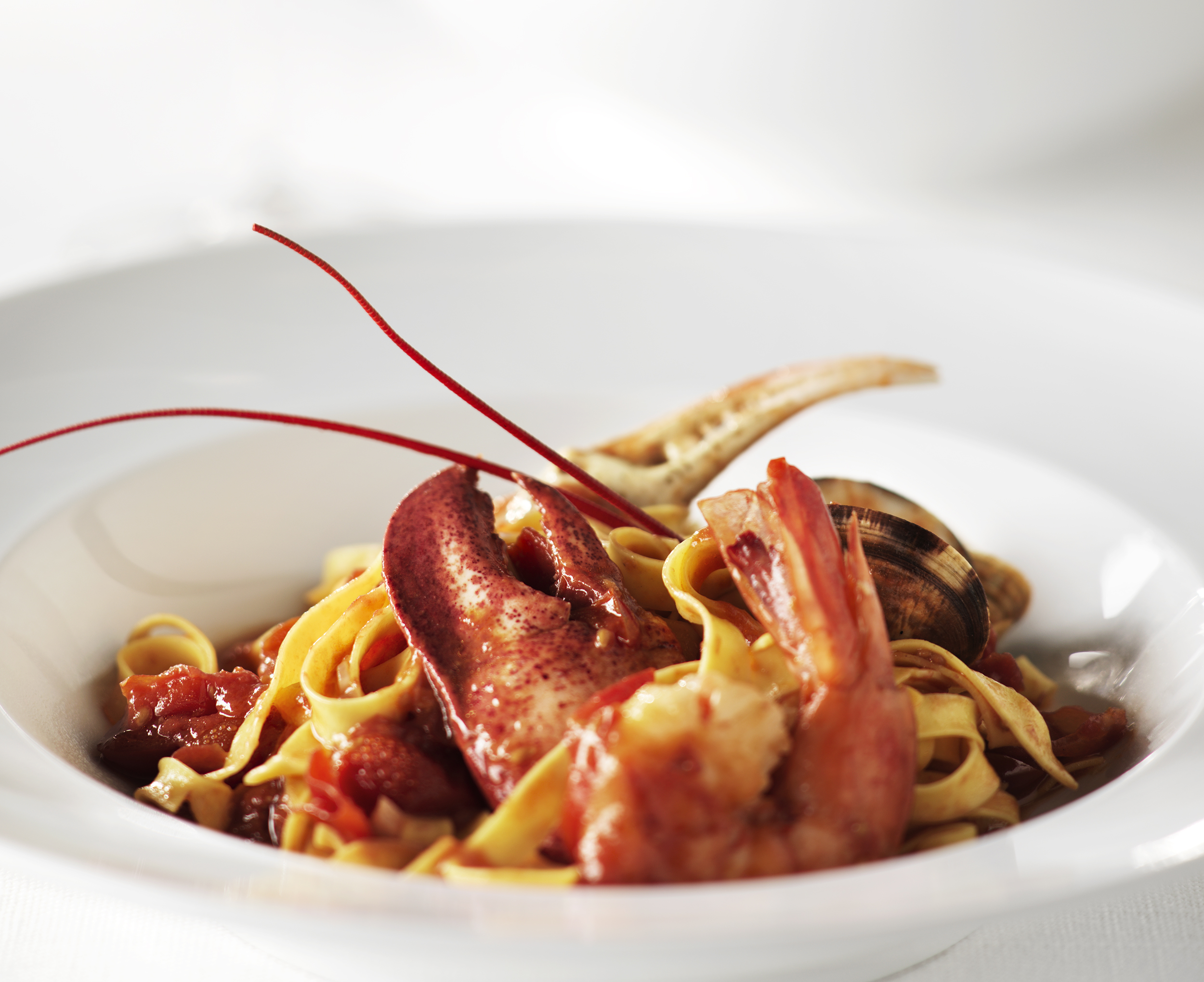 lobster seafood pasta advertising food photos