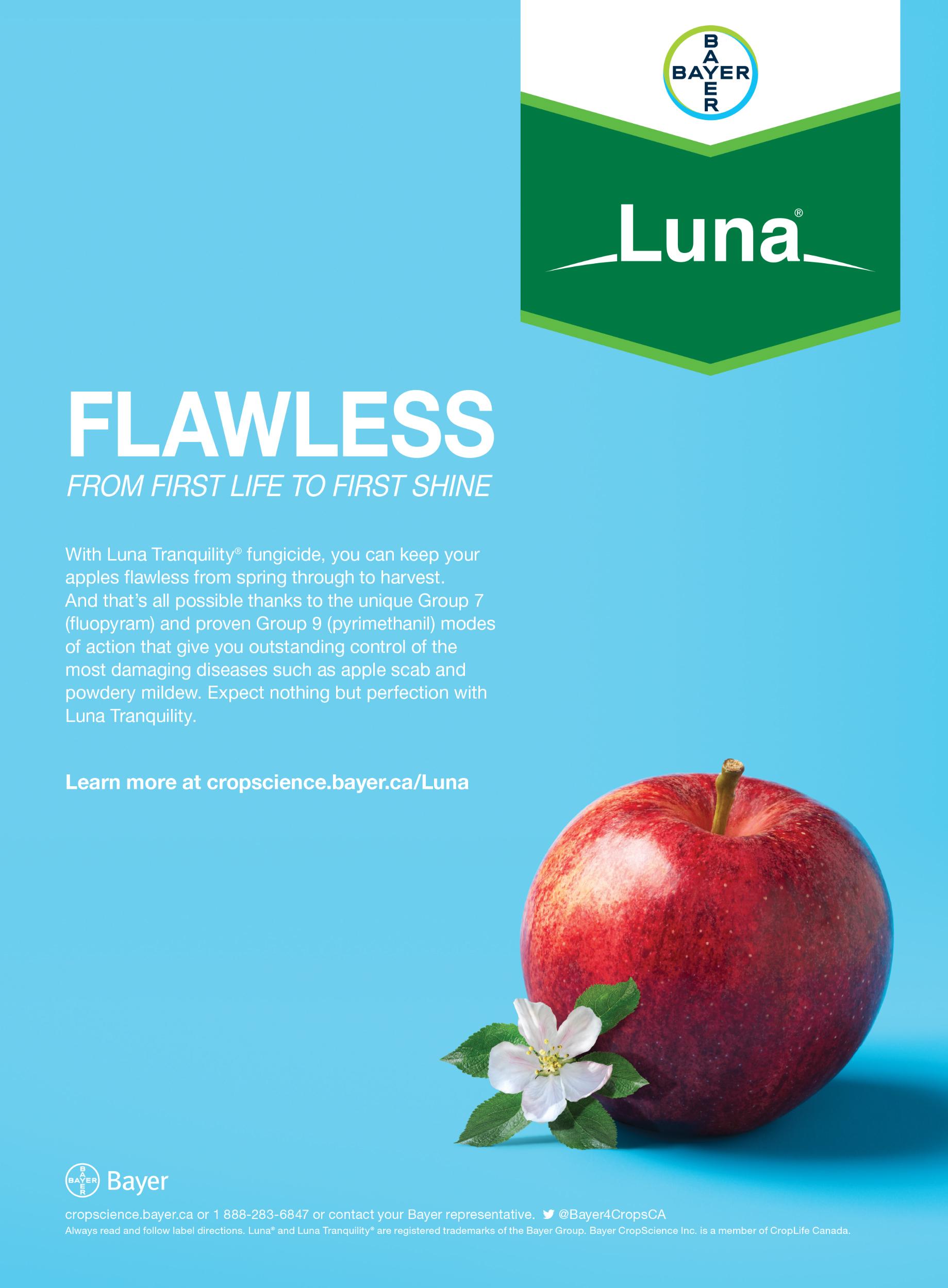 Luna Brand Launch Print - Apple.jpg