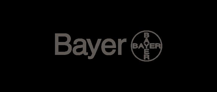 bay.png