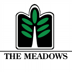 Meadows logo_Transparent background 2.png
