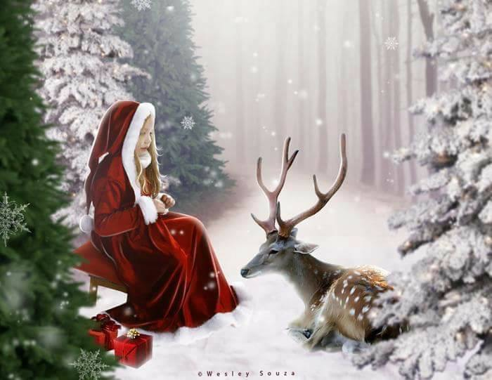 Christmas blog3.jpg
