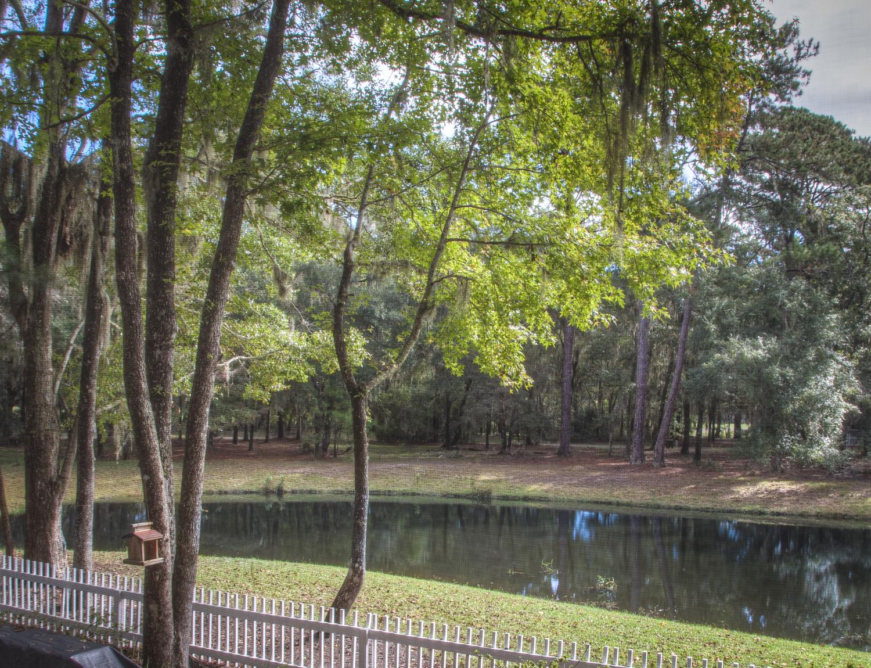 030 backyard-pond.jpg