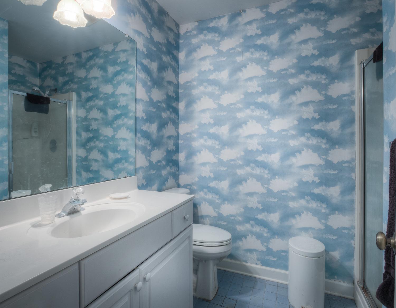 250upper-bathroom-PS1.jpg