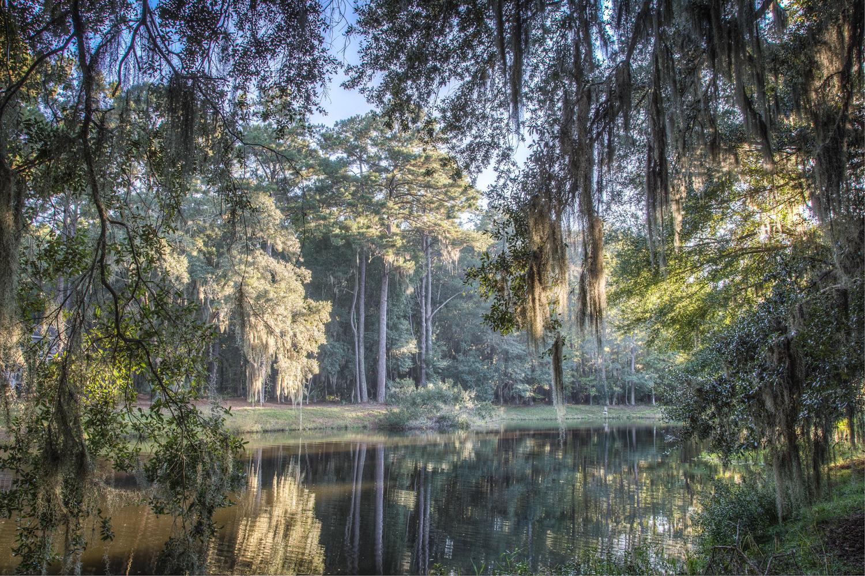 020 pond-view.jpg