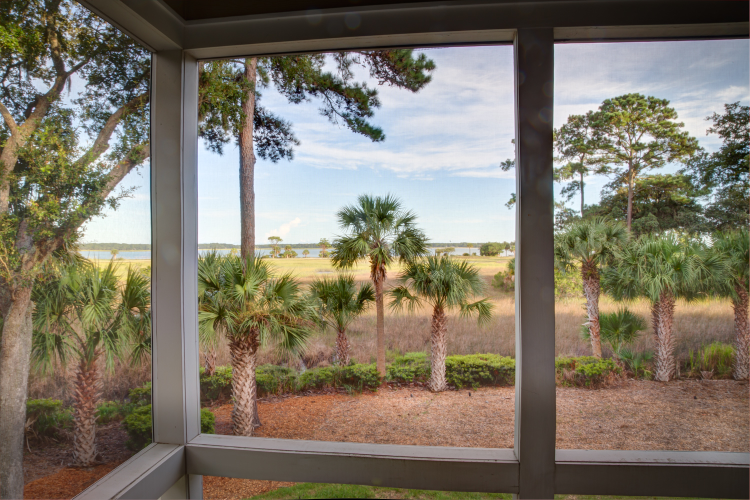 100 screened-porch-view-PS2.jpg