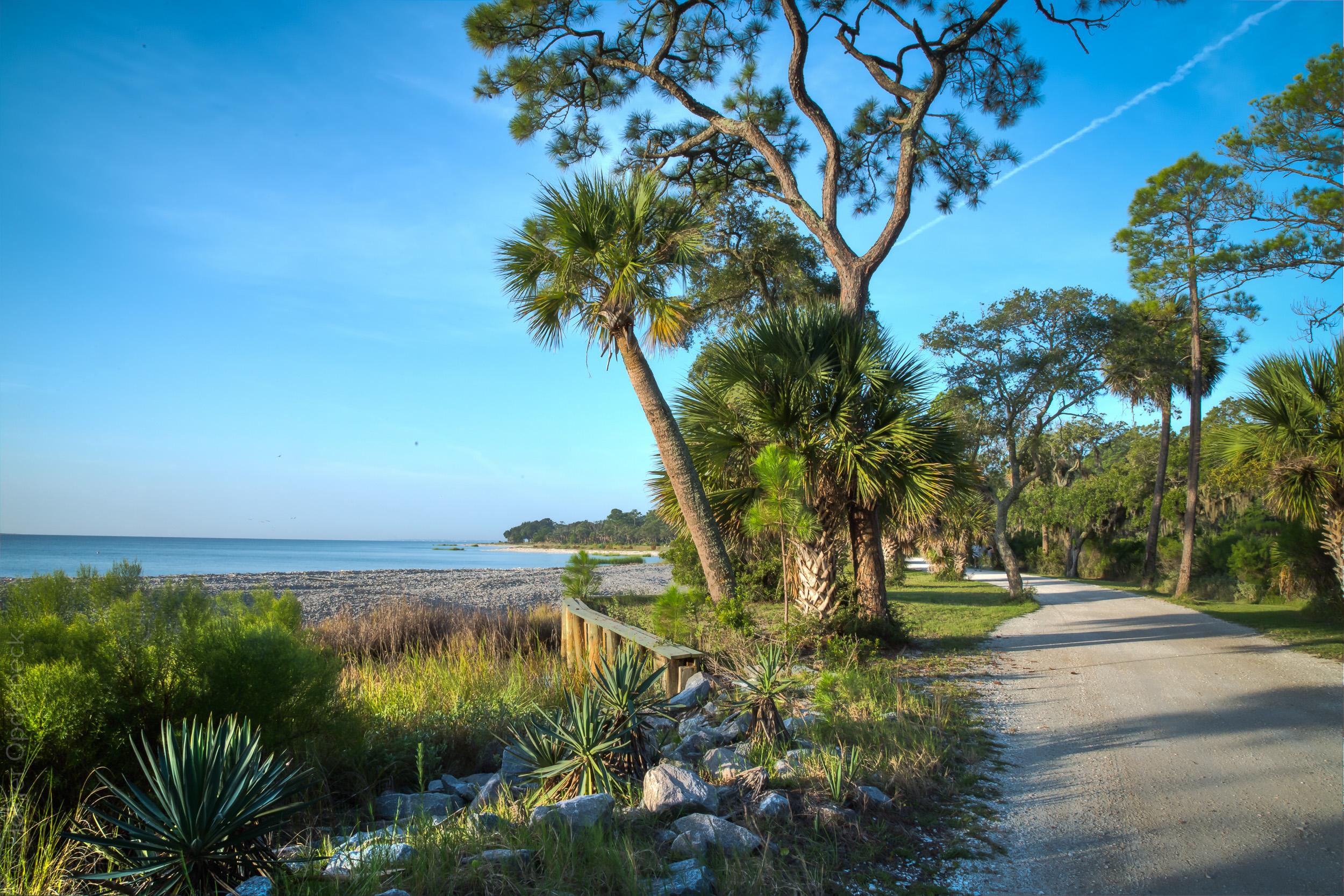 040 beach-road-morning.jpg
