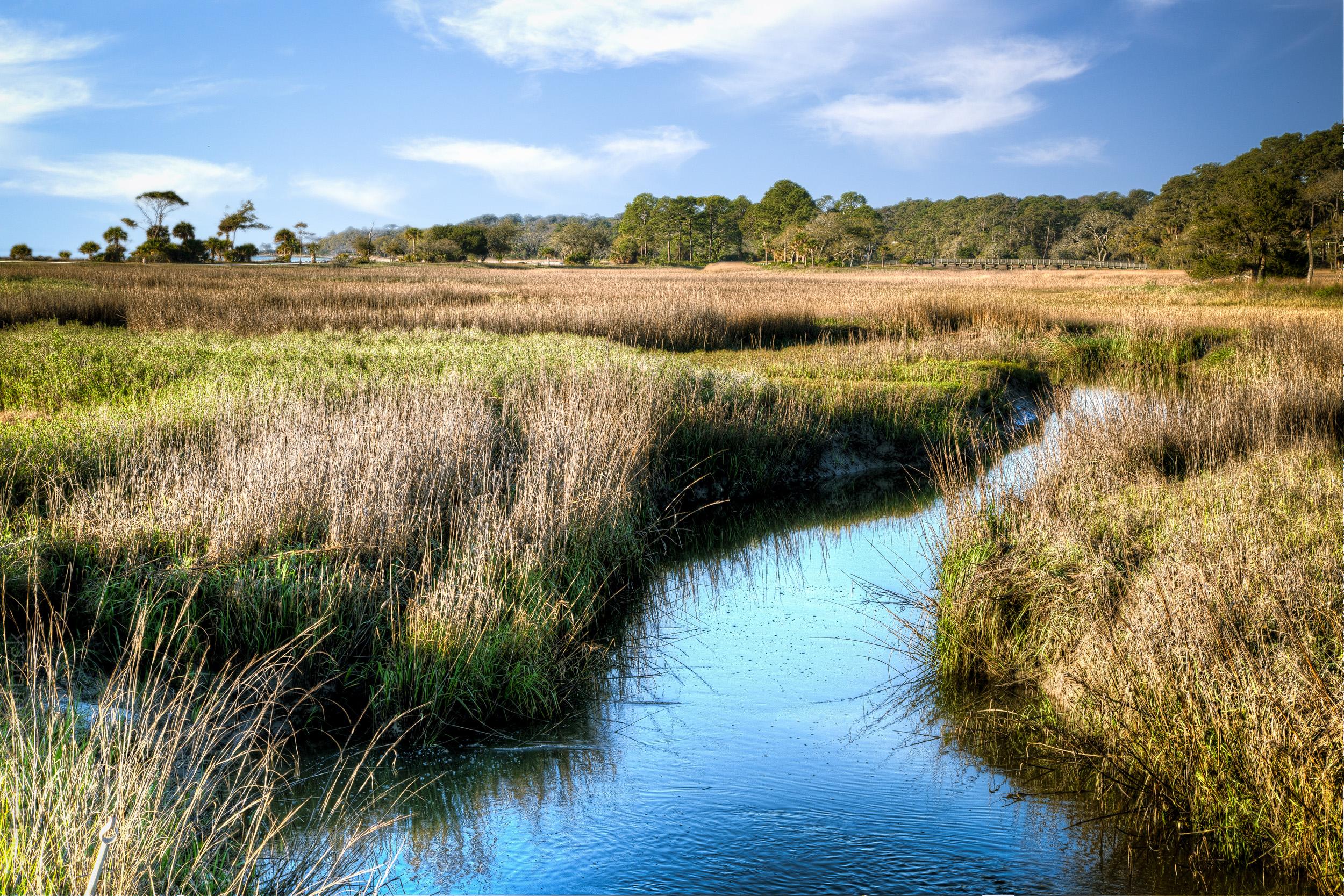 ocean-marsh-waterway-B&W-22x27.jpg