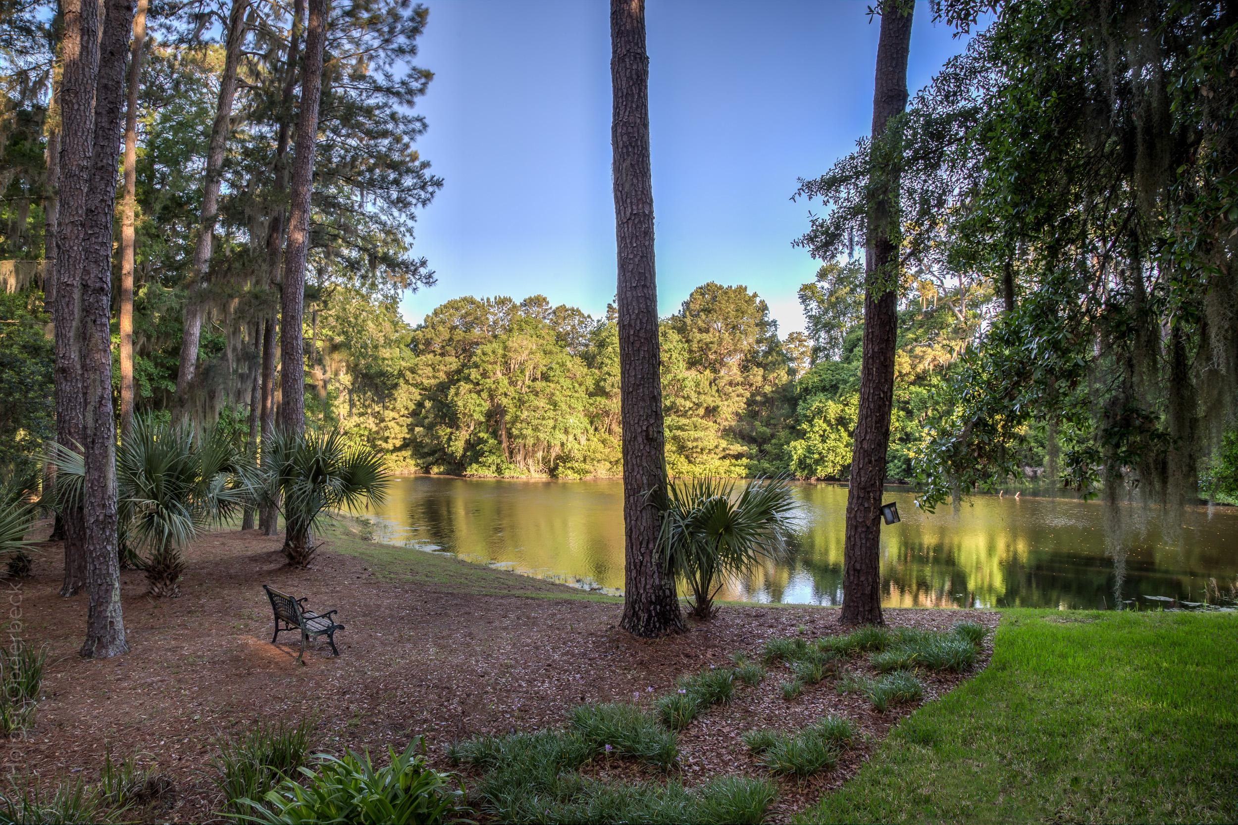 pond-bench-view-PS1.jpg