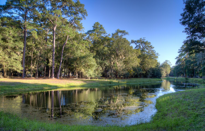 060  backyard-pond-PS2.jpg