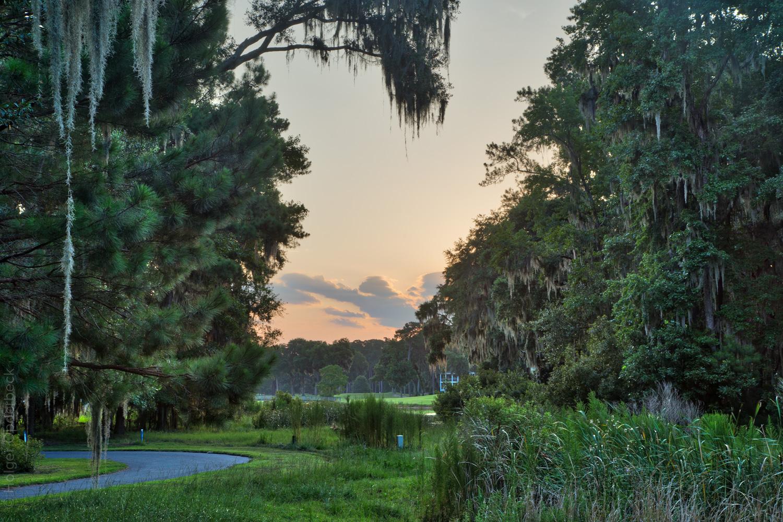 osprey-sunrise.jpg