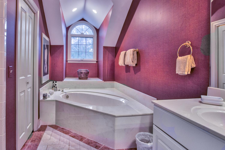 bathroom-two-tub-PS1.jpg