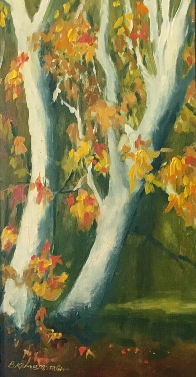 Betsy Kimbrough, Green Valley AZ
