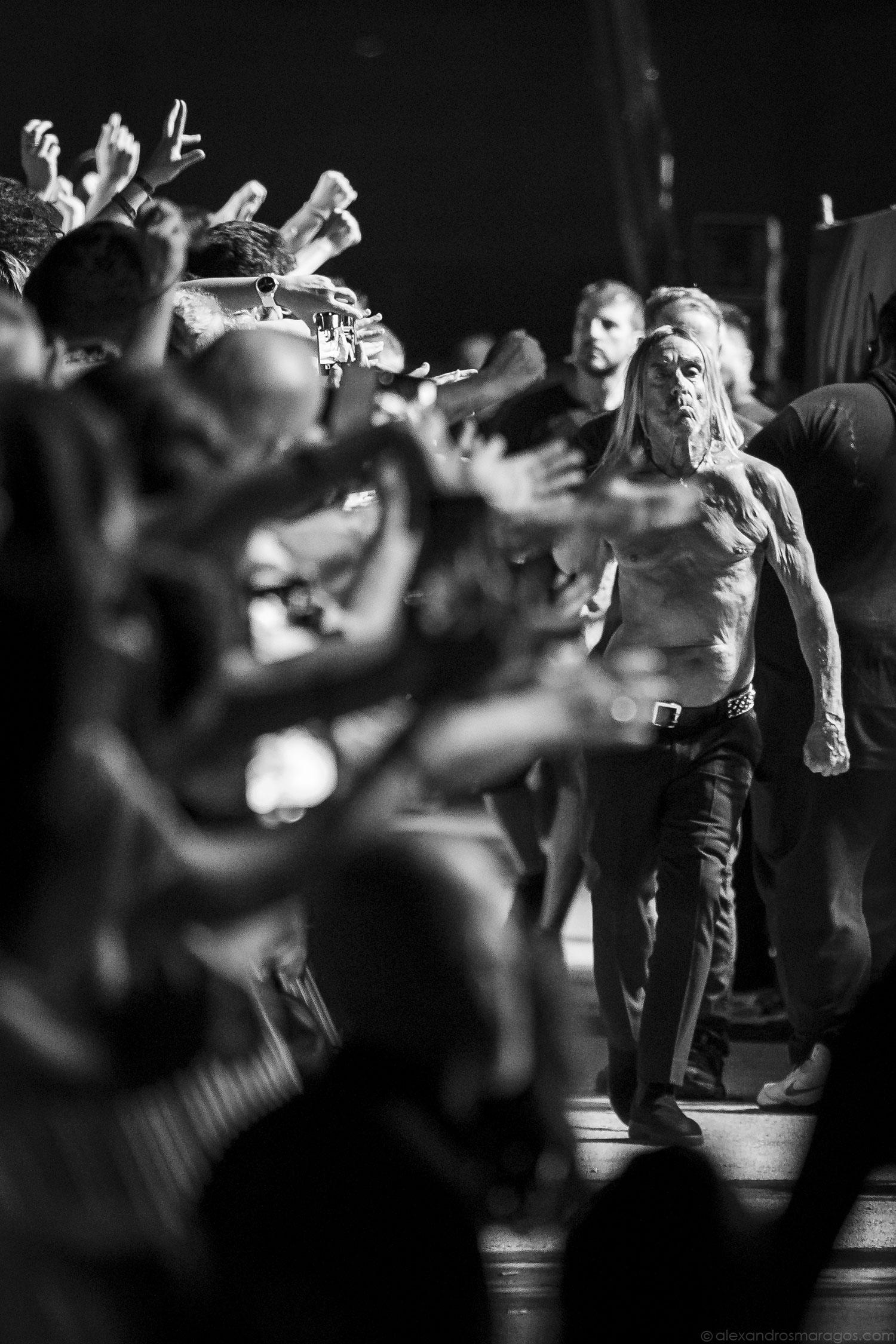 Iggy Pop - Release Athens 2019 | © Alexandros Maragos