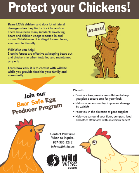 Want to keep your chickens safe? - Join our bear friendly egg producer program! Visit this page for more info.