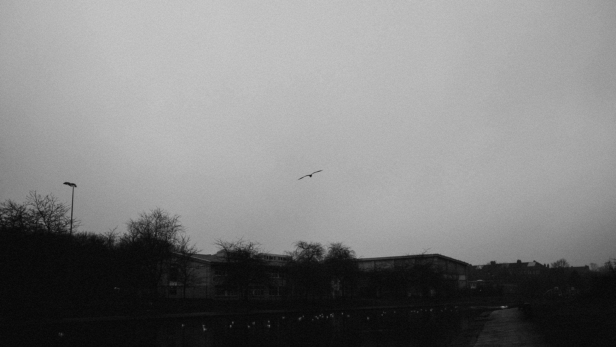 20190106_untitled_004.jpeg