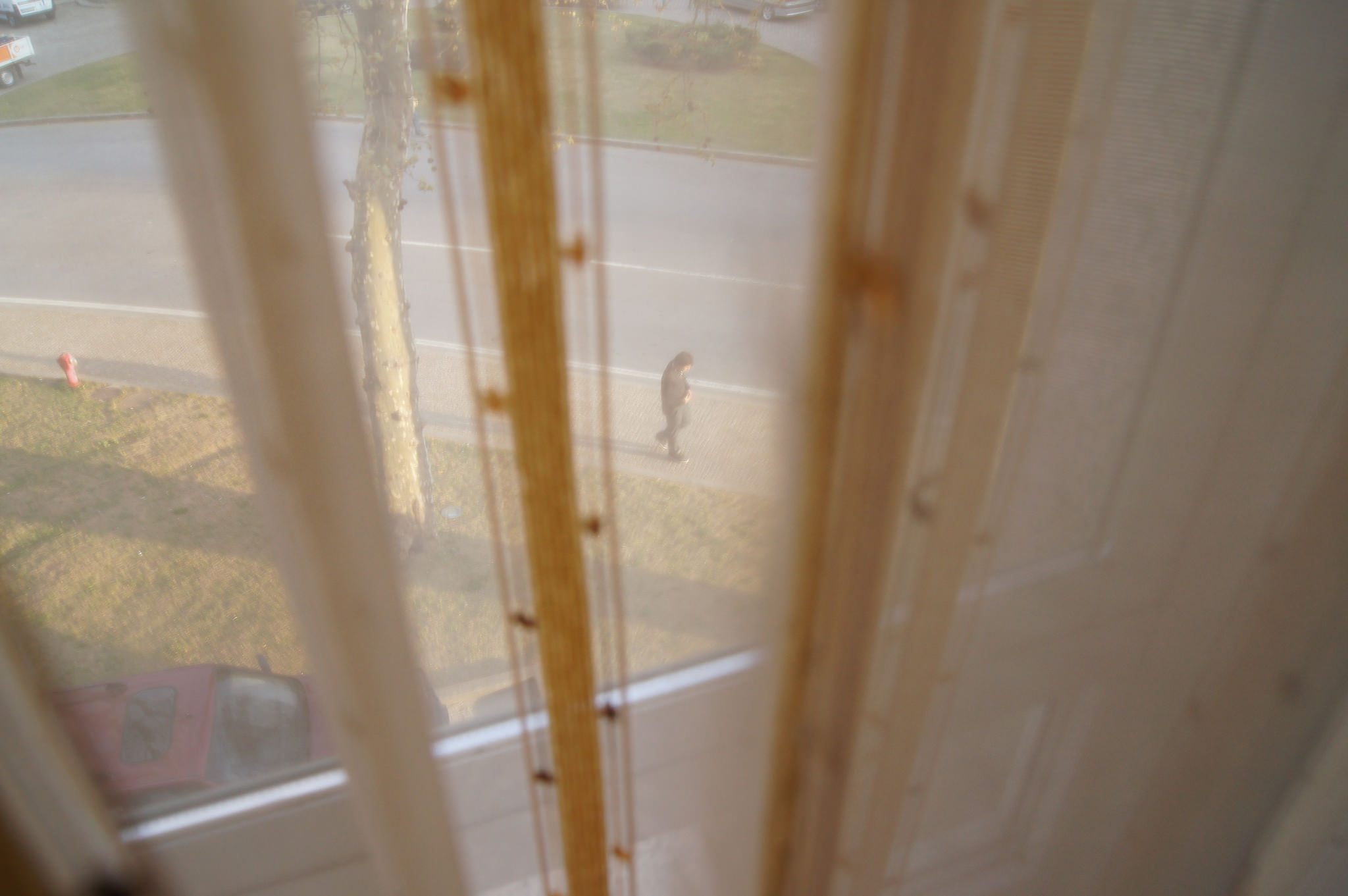Soph Bonde/Argot Publications Inc    [Image Description: A photograph of a person walking down a street in late afternoon. The perspective is voyeuristic and out of focus, from the second story of a building, through gauze curtains.]