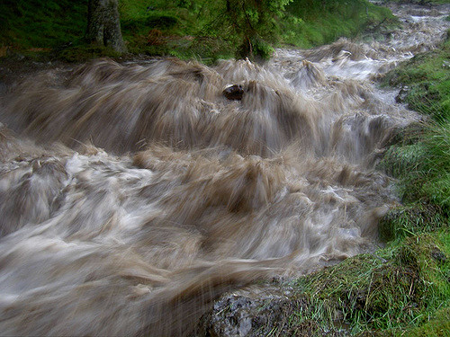 [Image description: photograph of a rushing waterfall.]     Andy Armstrong / Creative Commons