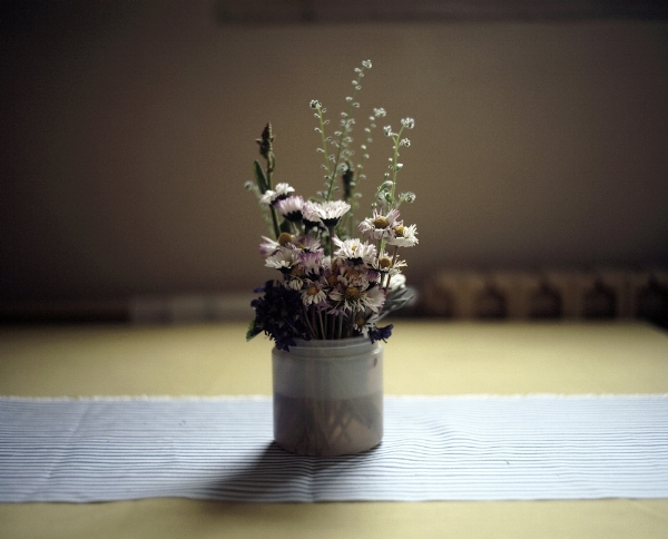 [Image description: photograph of a small bunch of wildflowers sitting in a plastic cup full of water on a table. A striped table runner cuts through the centre of the image horizontally.]  Marina Paulenka